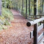 photo railing